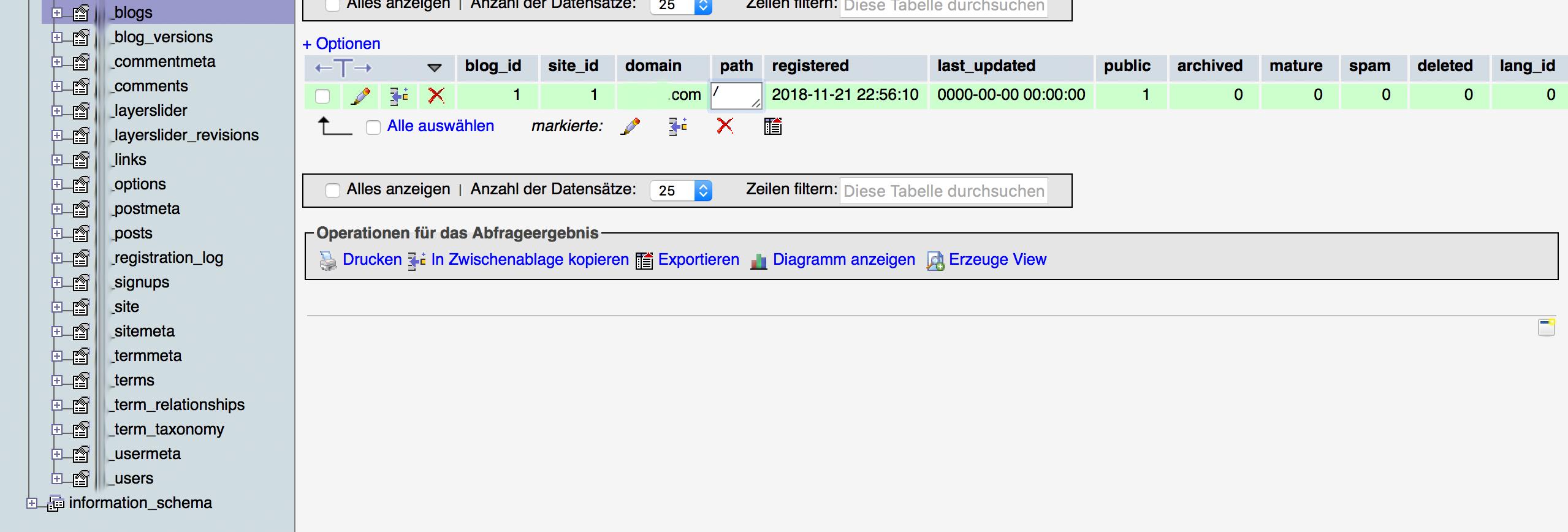 Fehler beim Aufbau einer Datenbankverbindung bei WordPress Multisite beheben